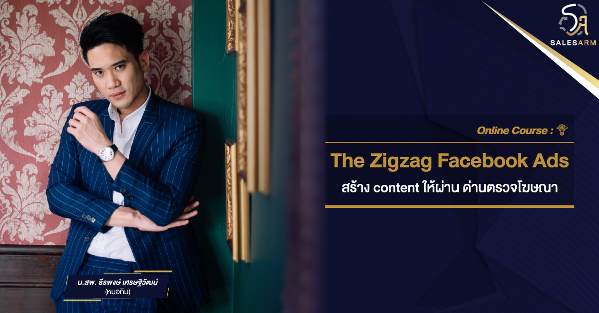 Online Course - The Zigzag Facebook Ads